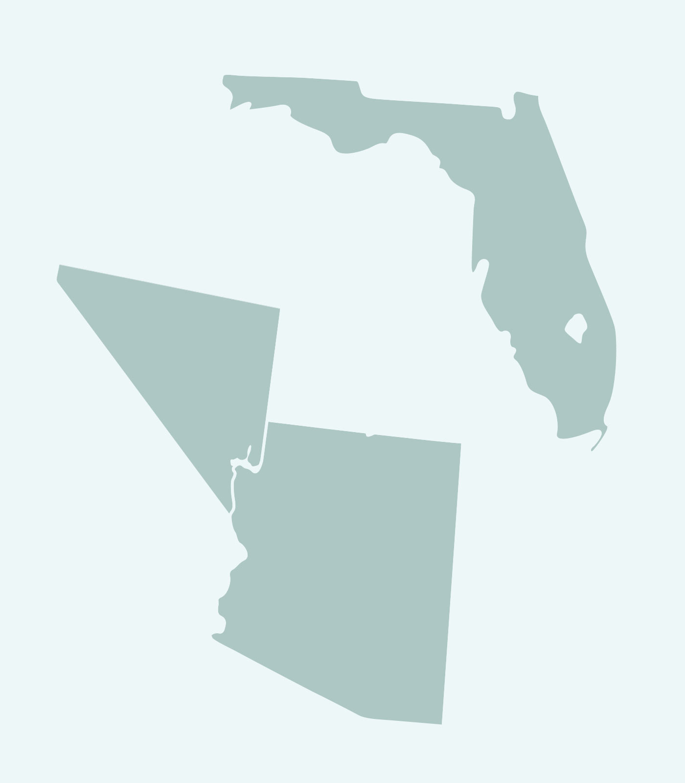 Sales Rep's Map of Florida, Arizona, Nevada Line Keren Hart